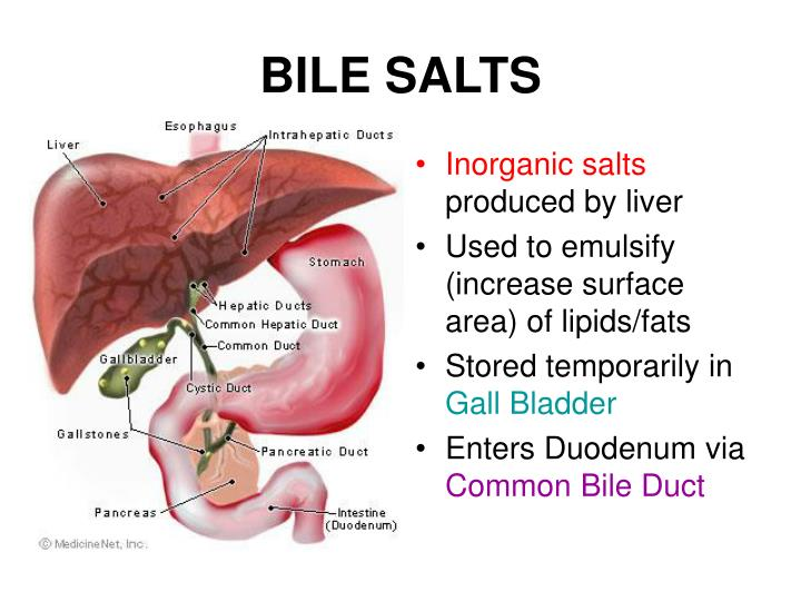 BILE SALTS