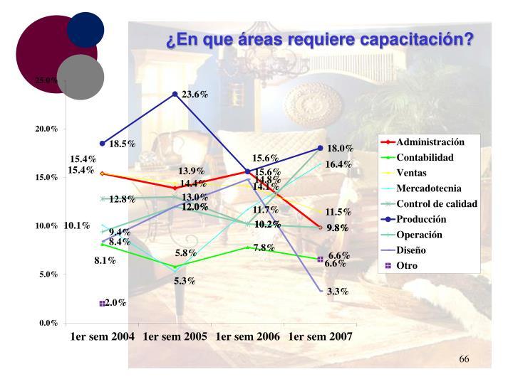 ¿En que áreas requiere capacitación?