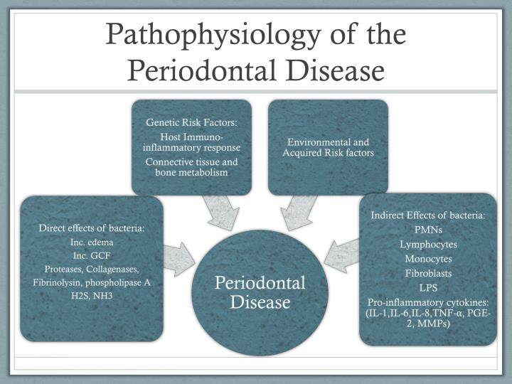 physiology of periodontal and dental problems essay Physiology of periodontal and dental problems essay examples - accumulation  of inflammatory cells and their products which then leads to deterioration of the.