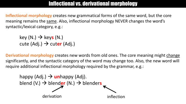 Inflectional vs. derivational morphology