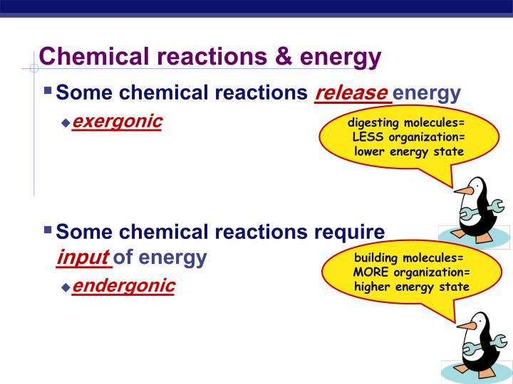 digesting molecules=