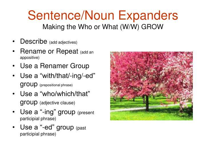 Sentence/Noun Expanders