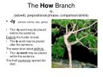 the how branch ly adverb prepositional phrase comparison simile