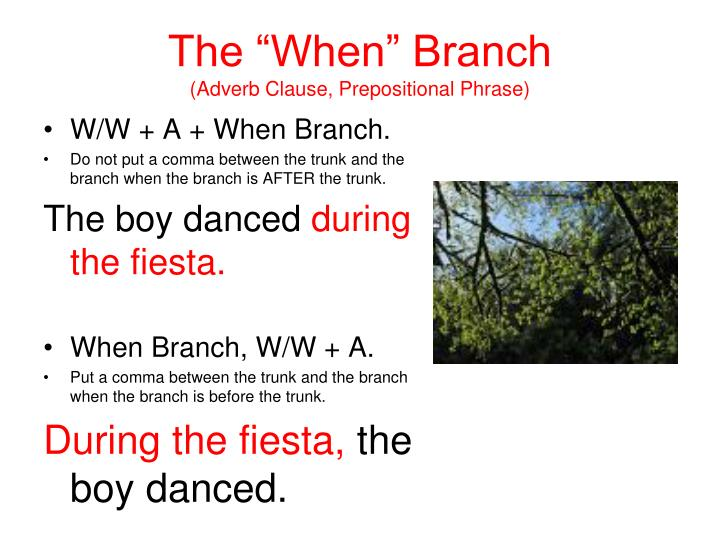 "The ""When"" Branch"