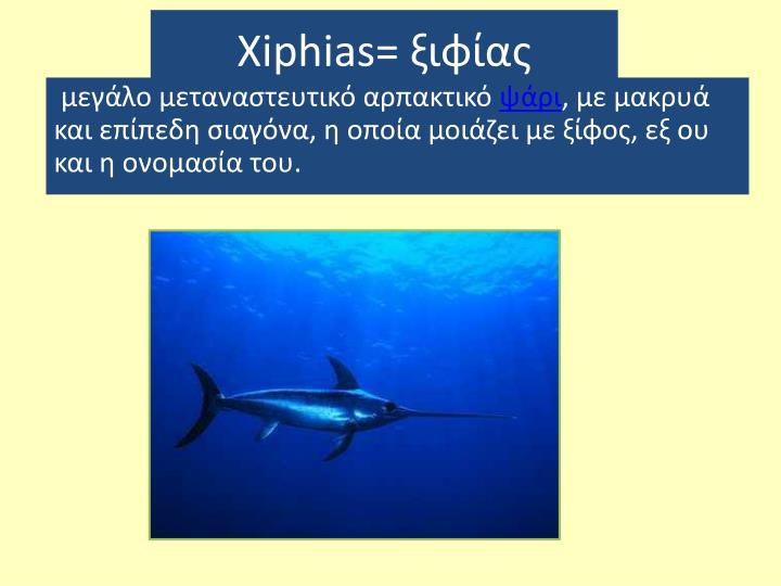 Xiphias