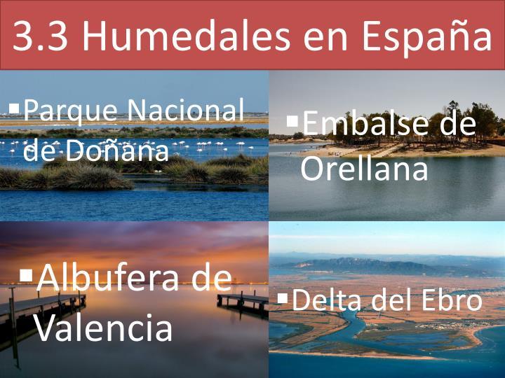 3.3 Humedales en España