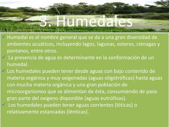 3. Humedales