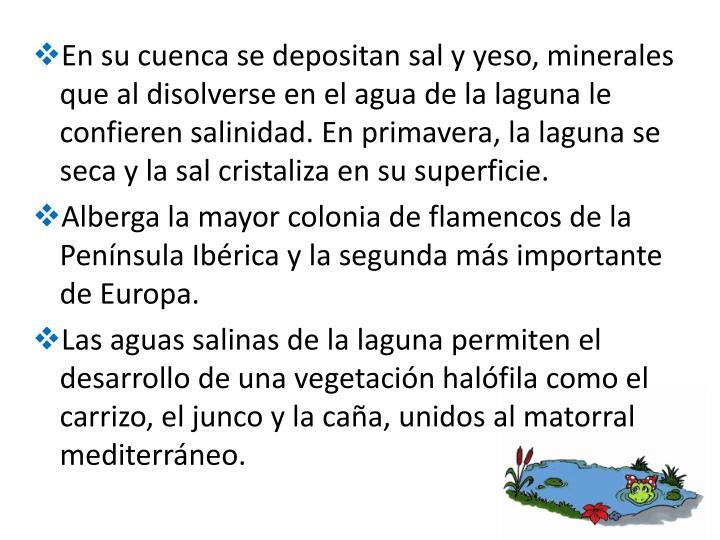 En su cuenca se depositan sal y yeso, minerales que al disolverse en el agua de la laguna le confieren salinidad. En primavera, la laguna se seca y la sal cristaliza en su superficie.
