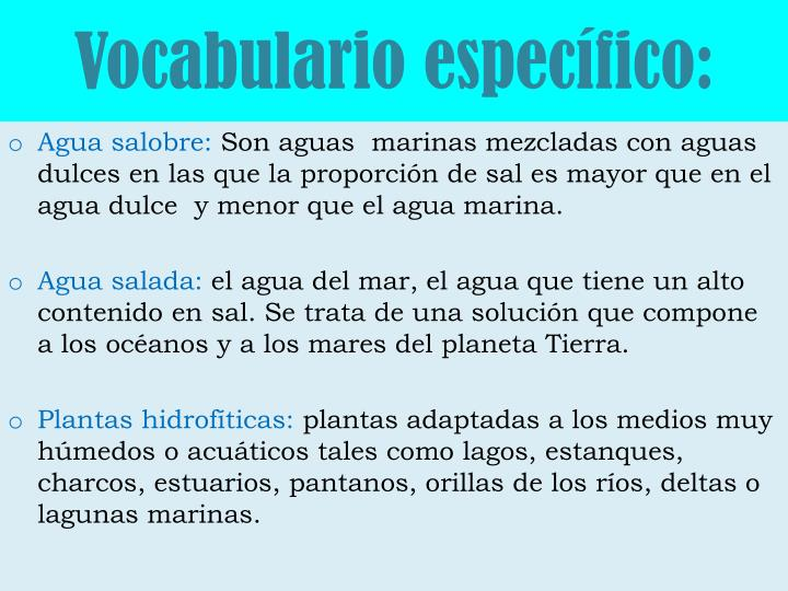 Vocabulario específico: