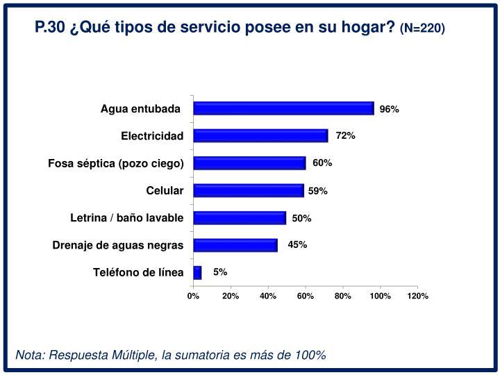 P.30 Qu tipos de servicio posee en su hogar