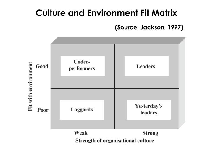 Culture and Environment Fit Matrix