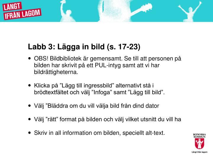 Labb 3: