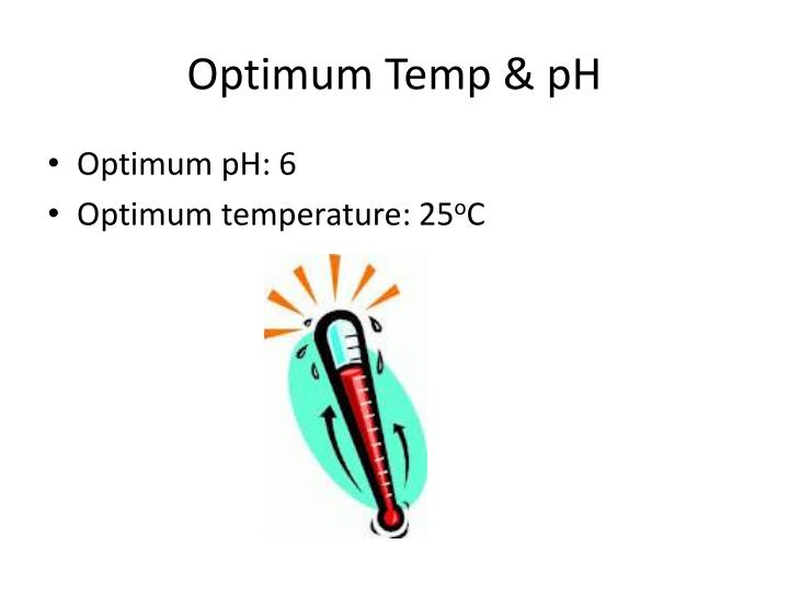 Optimum Temp & pH