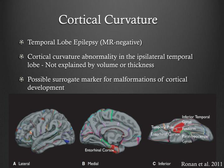 Cortical Curvature