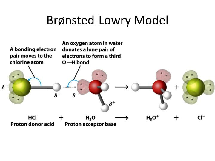 Brønsted-Lowry Model