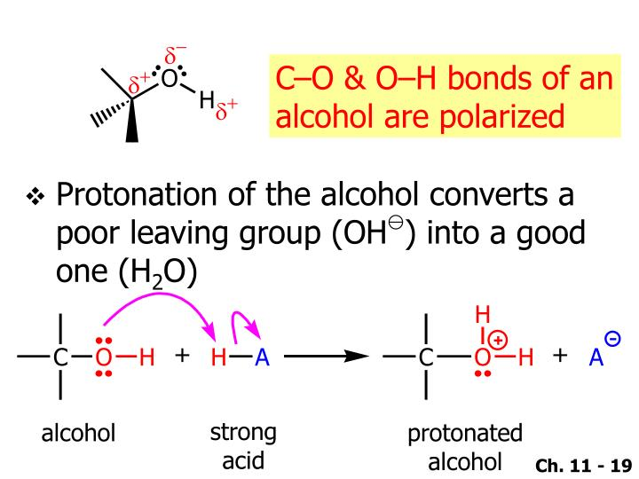 C–O & O–H bonds of an