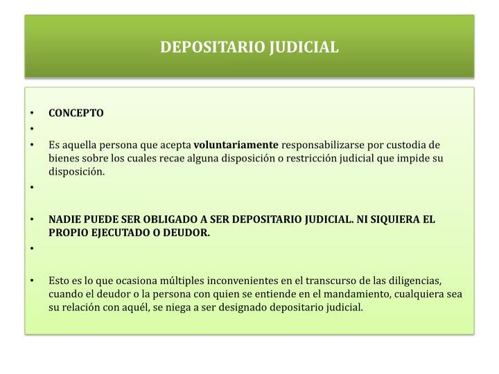 DEPOSITARIO JUDICIAL