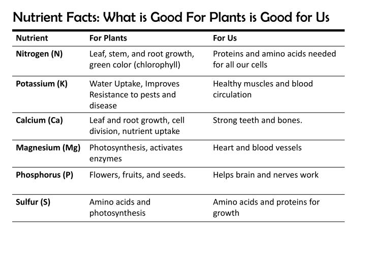 Nutrient Facts: What is Good For Plants is Good for Us