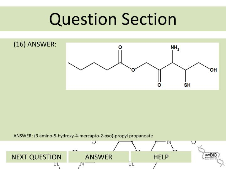 (16) ANSWER: