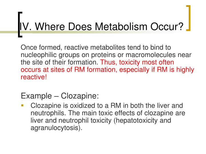 IV. Where Does Metabolism Occur?