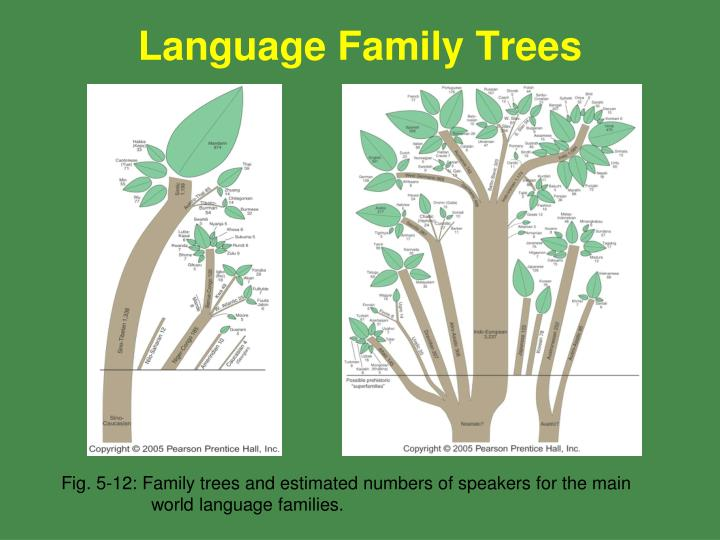 Language Family Trees