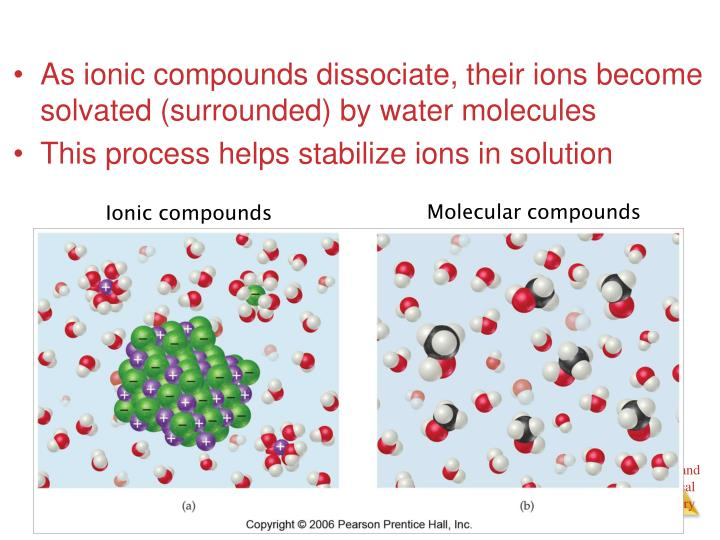 As ionic compounds dissociate, their ions become solvated (surrounded) by water molecules