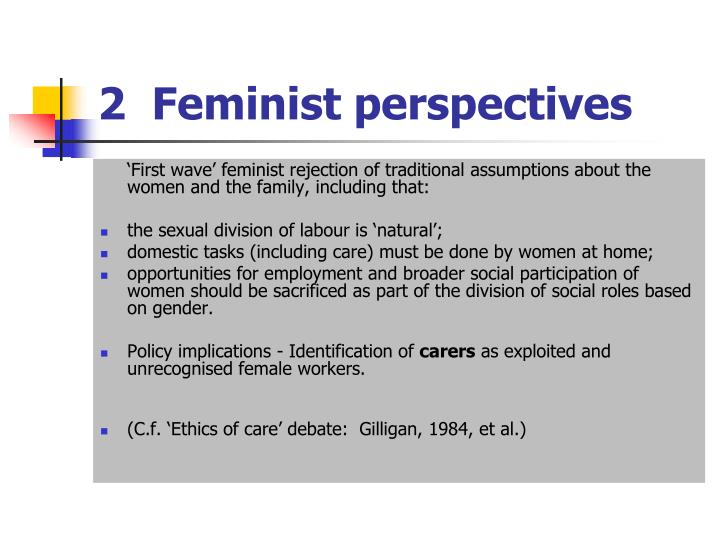 2  Feminist perspectives
