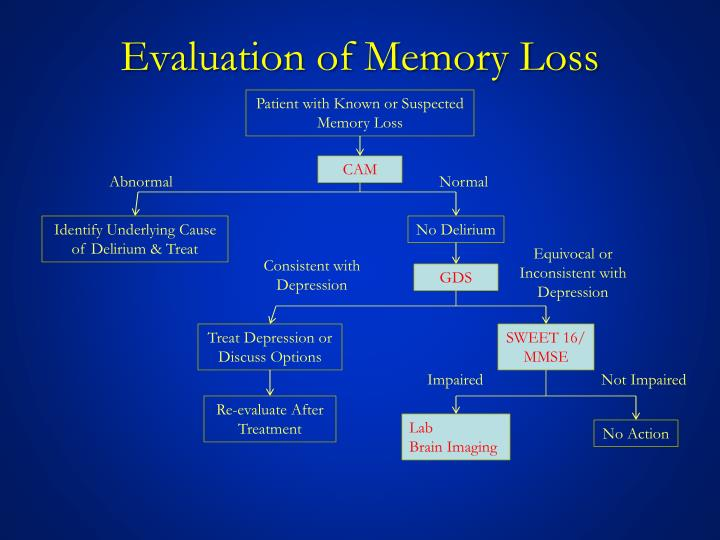 Evaluation of Memory Loss