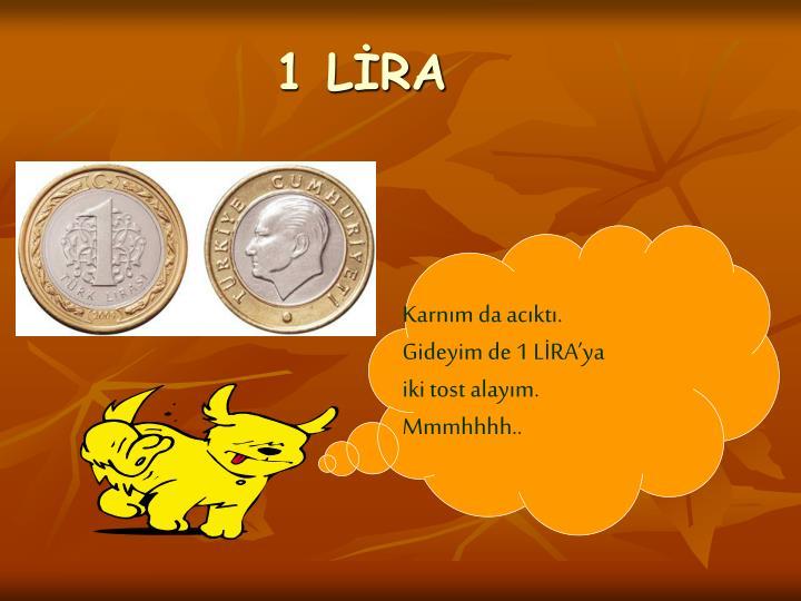 1 LİRA