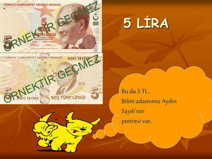 5 LİRA