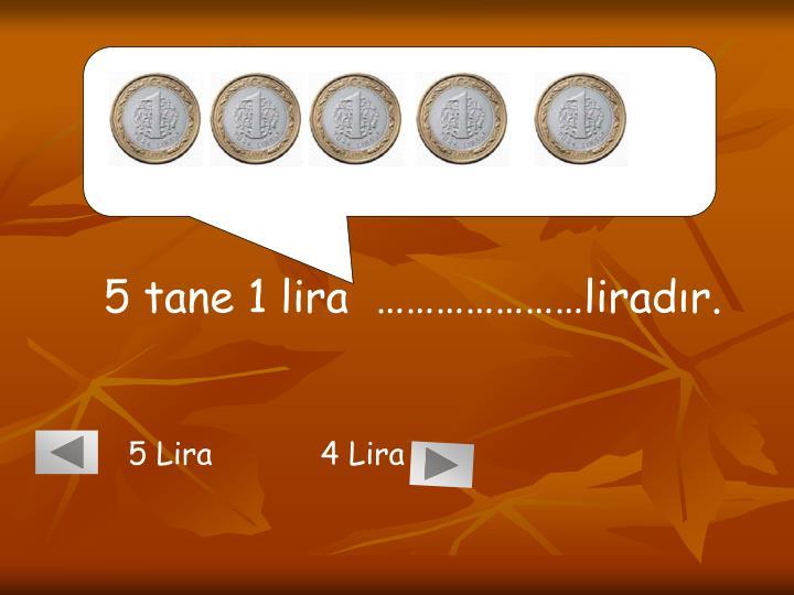 5 tane 1 lira  …………………liradır.