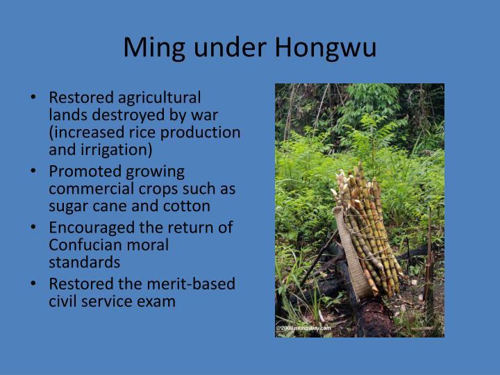 Ming under