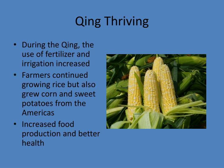 Qing Thriving