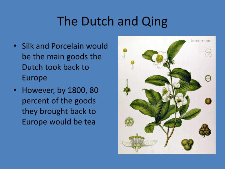 The Dutch and Qing