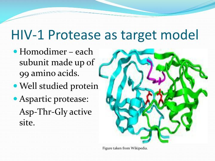 HIV-1 Protease as target model