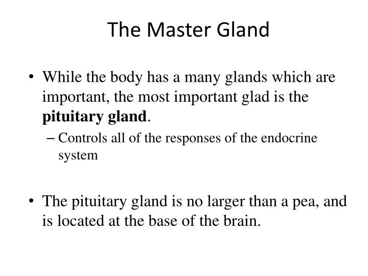 The Master Gland