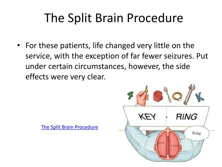 The Split Brain Procedure