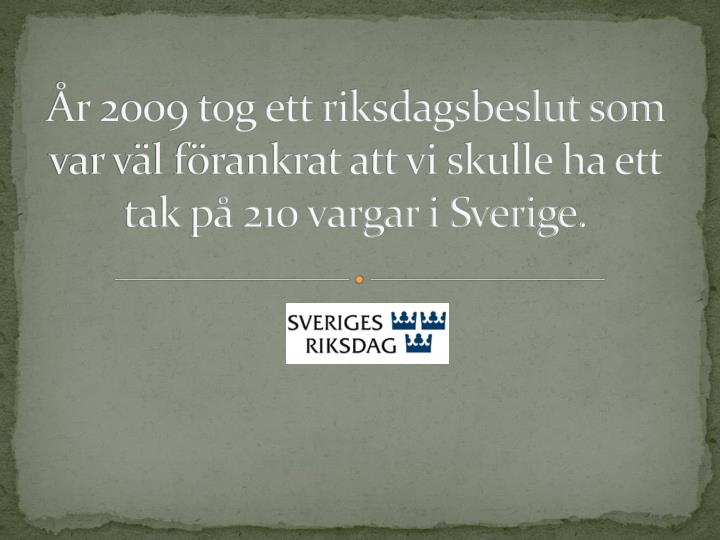 r 2009 tog ett riksdagsbeslut som var vl frankrat att vi skulle ha ett tak p 210 vargar i Sverige.