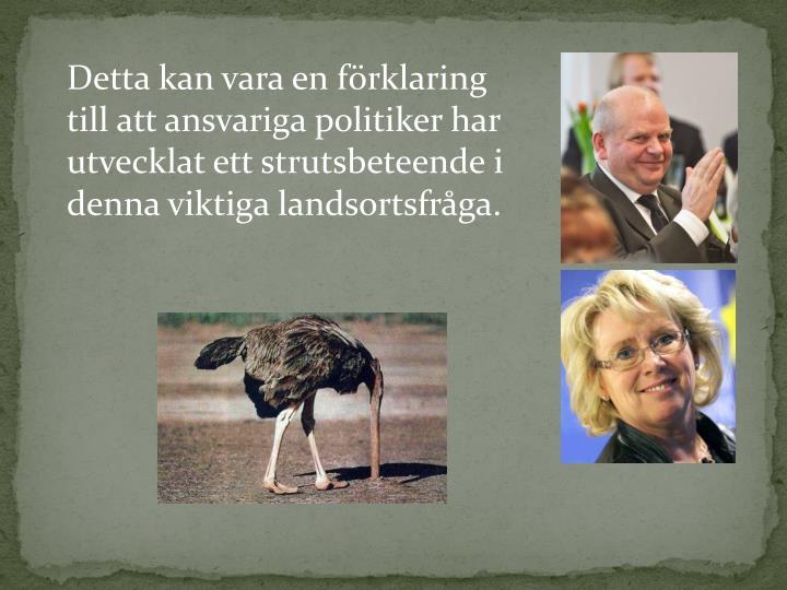 Ansvariga politiker kommer att hllas ansvariga fr att tusentals trafik- och vargskadade djur fr ligga och lida i