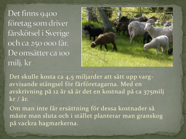 Det finns 9400 företag som driver fårskötsel i Sverige och ca 250 000 får.