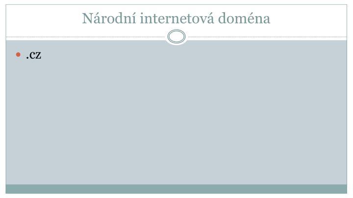 Národní internetová doména