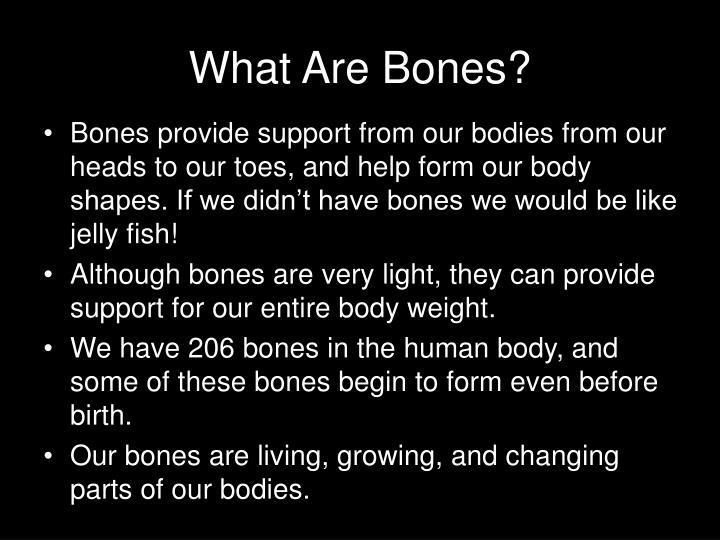 What Are Bones?