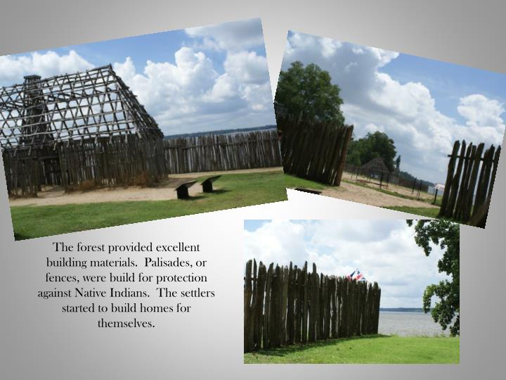 The forest provided excellent building materials.  Palisades, or fences, were build for protection against Native Indians.  The settlers started to build homes for themselves.