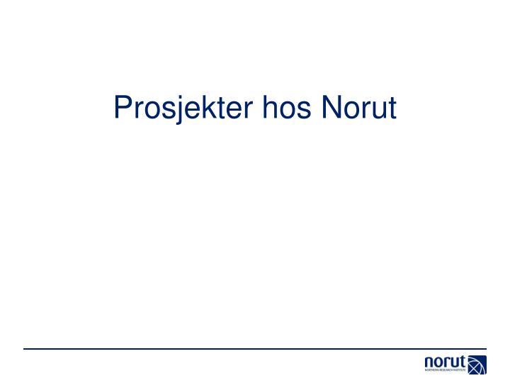 Prosjekter hos Norut