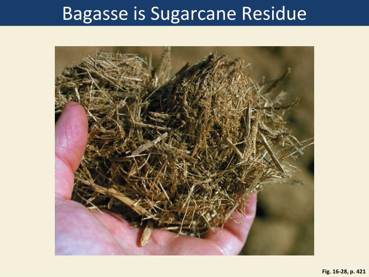 Bagasse is Sugarcane Residue