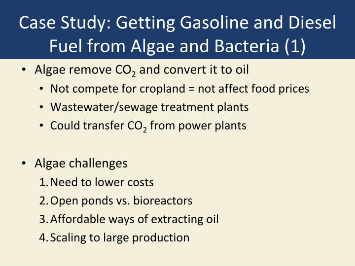 Case Study: Getting Gasoline and Diesel Fuel from Algae and Bacteria (1)