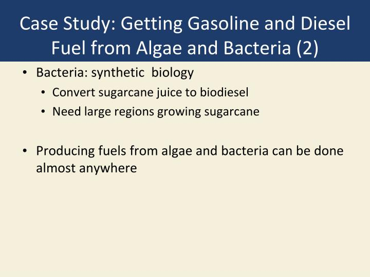 Case Study: Getting Gasoline and Diesel Fuel from Algae and Bacteria (2)