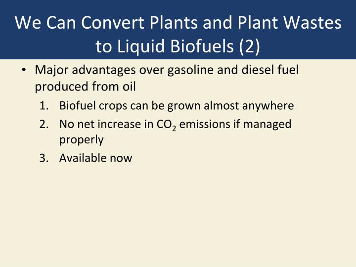 We Can Convert Plants and Plant Wastes to Liquid Biofuels (2)