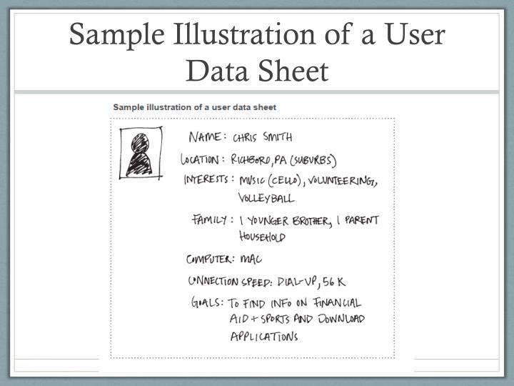 Sample Illustration of a User Data Sheet