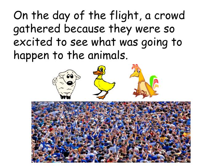 On the day of the flight, a crowd gathered because they were so excited to see what was going to happen to the animals.
